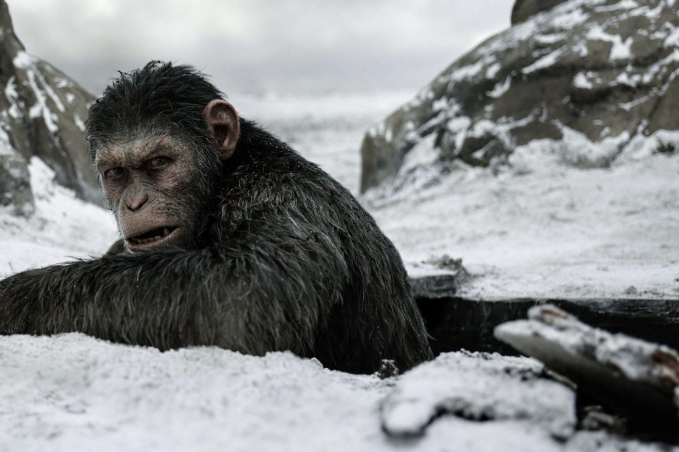 Look Who's Talking: 'War for the Planet of the Apes' wraps epic trilogy