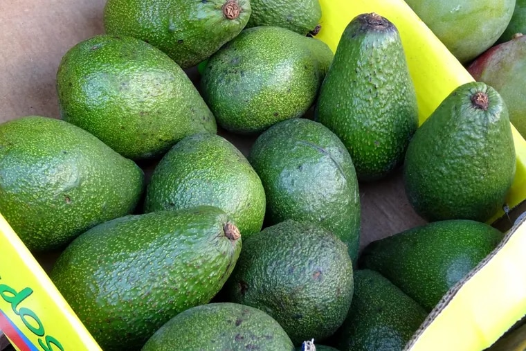 A dispute at the start of the month between avocado growers and the packers and exporters that distribute them to countries like the U.S. caused a significant increase in cost per case for restaurants citywide.