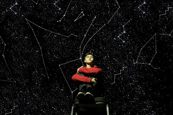'Curious Incident' at the Walnut Street Theatre: Fine cast, brilliant production