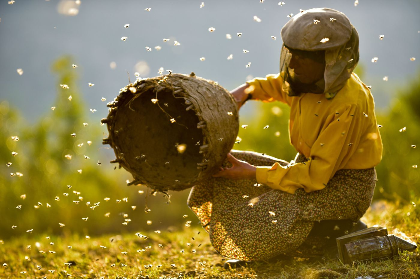 How a movie connected me (and my suburban Philly garden) to a Macedonian beekeeper from halfway 'round the world