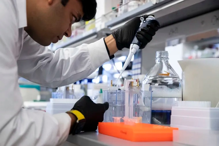 Faraz Zaidi tests the performance of a new coronavirus vaccine at the Wistar Institute in Philadelphia, using a technique called western blot analysis.