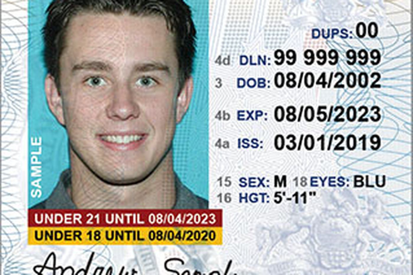 REAL ID column uncovers more problems in Pa. | Stu Bykofsky