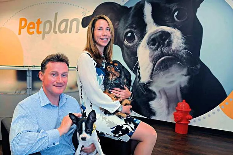 Chris Ashton (left), 41, holding Reggie, and his wife Natasha, 40, holding Montgomery, are co-founders and co-ceo's of their company Petplan, which sells pet medical insurance.  They were photographed at the company's Newtown Square office July 2, 2014.  ( CLEM MURRAY / Staff Photographer )