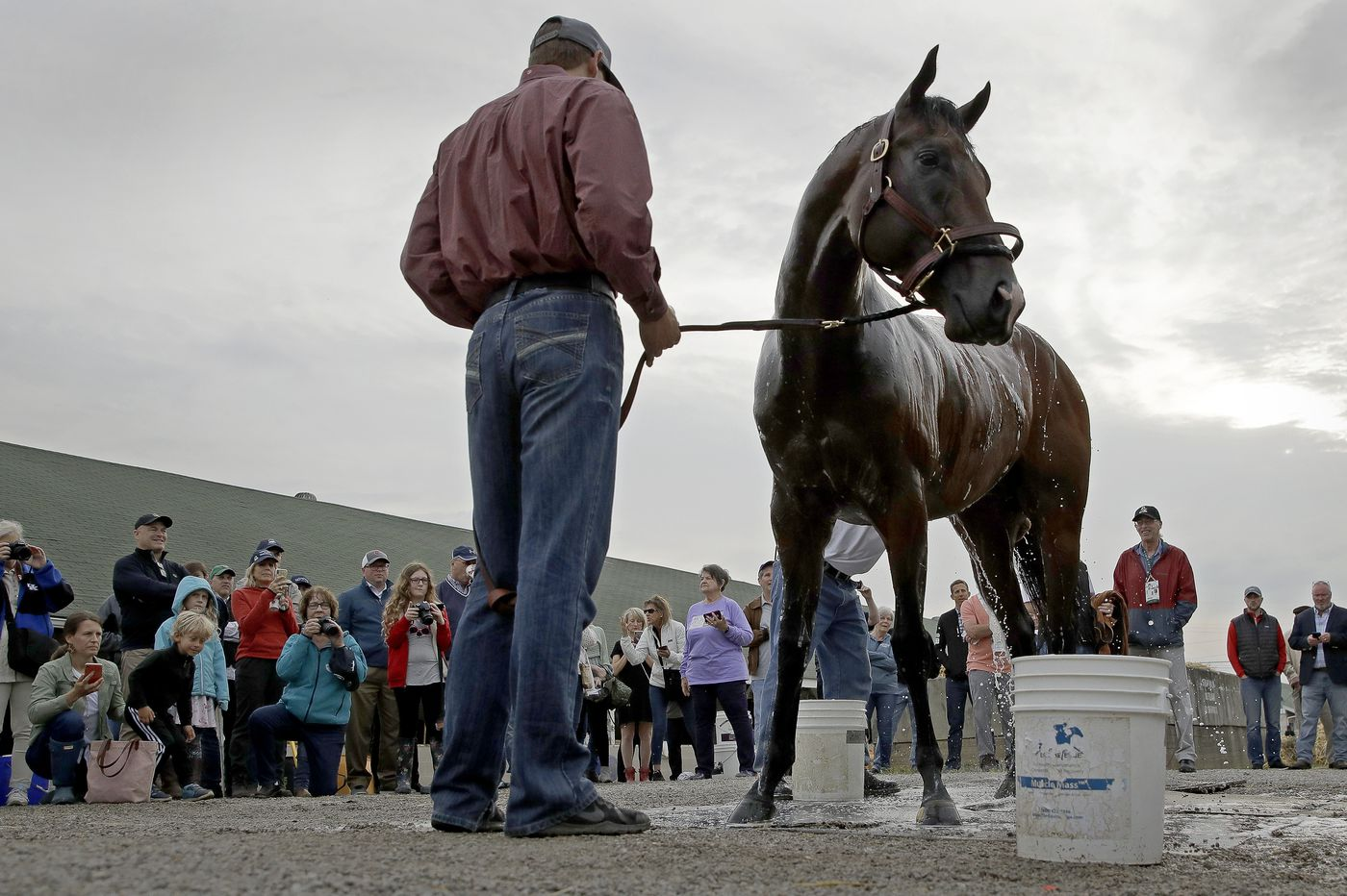 How did Omaha Beach's scratch shake up Saturday's Kentucky Derby?
