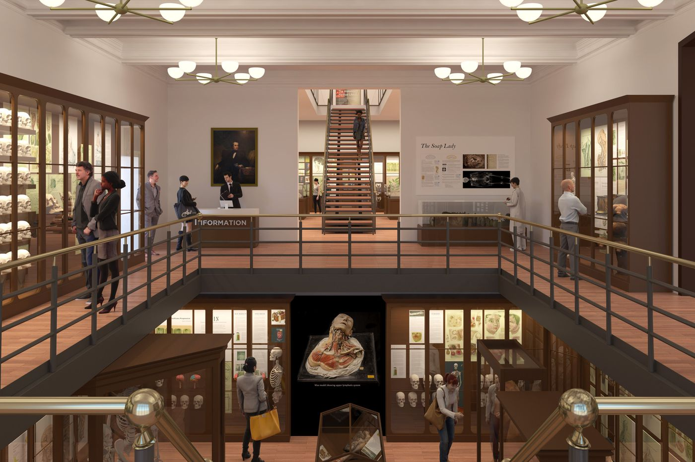Mutter Museum launching $25 million expansion drive