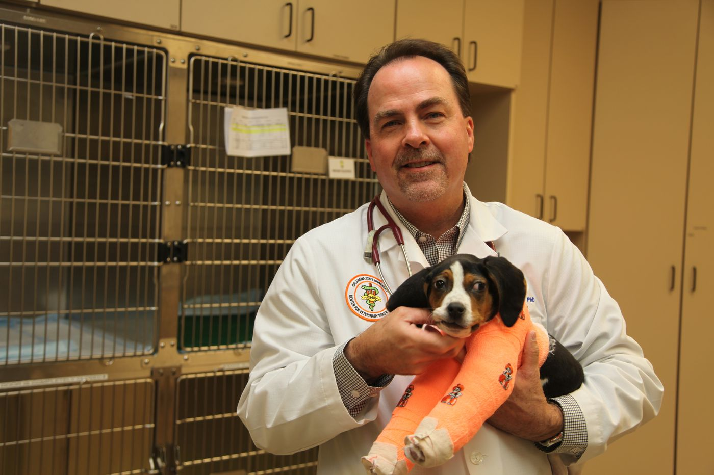 Veterinarians fix puppy paws pointing up instead of down