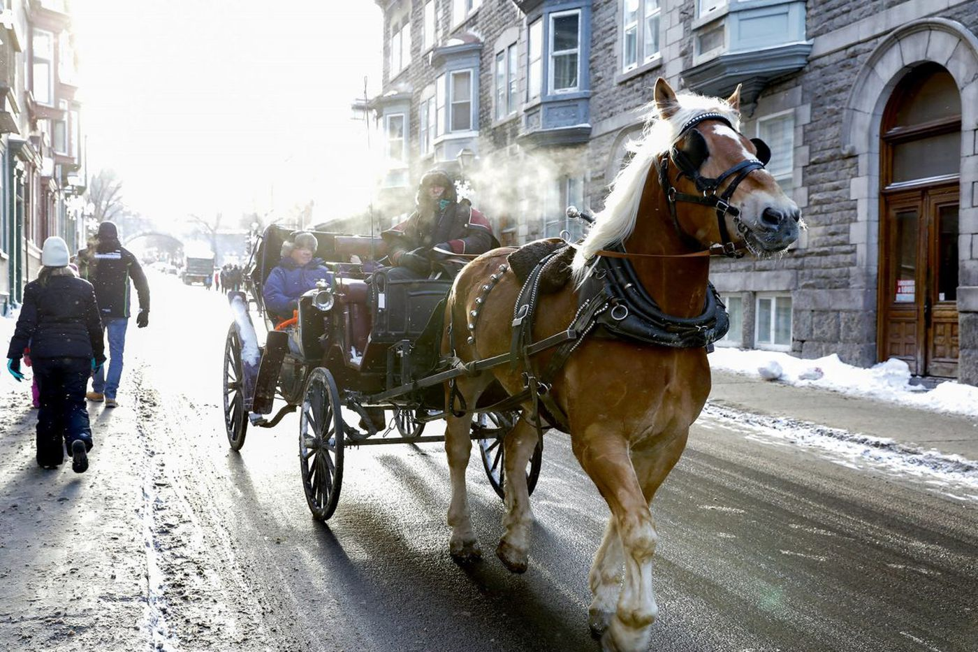 Quebec City in winter: A glorious wonderland
