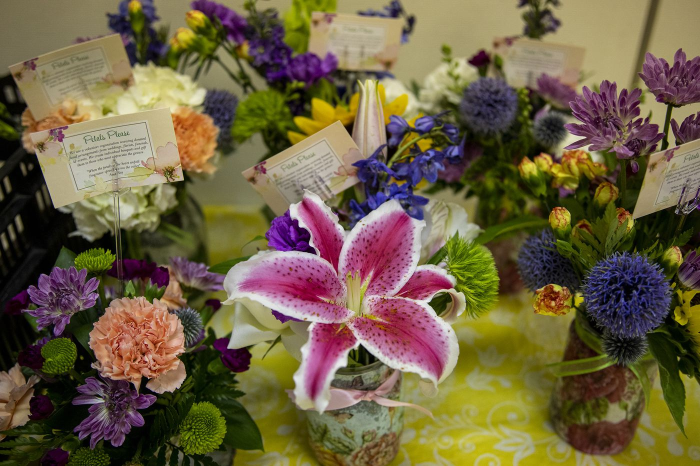 Downingtown's Petals Please recycles wedding and funeral flowers into free bouquets for lonely seniors