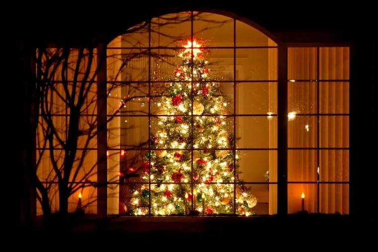 Is a real Christmas tree or an artificial one better for the environment? (Dreamstime)