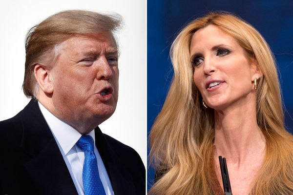 Ann Coulter responds to Trump: 'The only national emergency is that our president is an idiot'