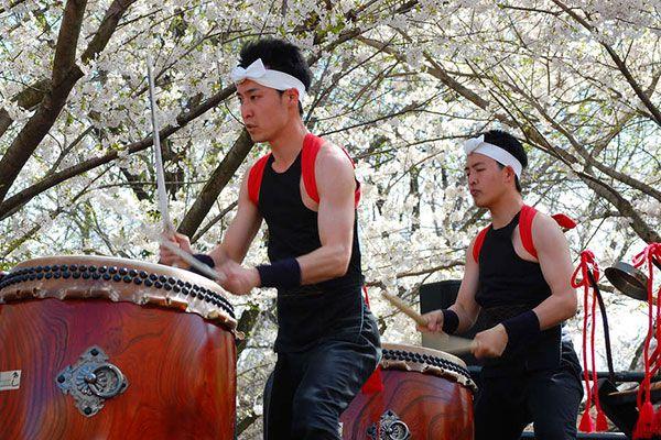 Subaru Cherry Blossom Festival: Time to stop and smell the sakura