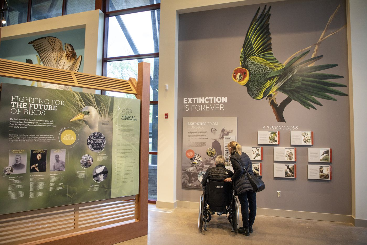 New Audubon Center resembles a bird in flight and aims to be ... on house wren house plans, purple martin house plans, pvc bluebird house plans, national wildlife bird house plans,