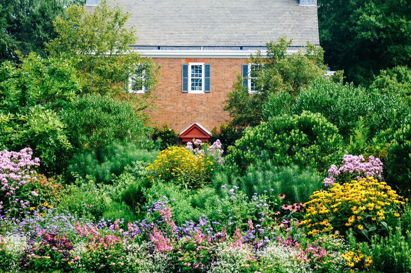 Delaware's Mt. Cuba Center is top botanical garden in the country, USA Today poll finds