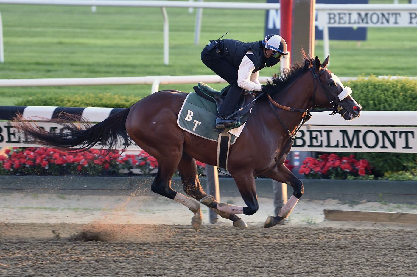 Belmont Stakes: Everything you wanted to know