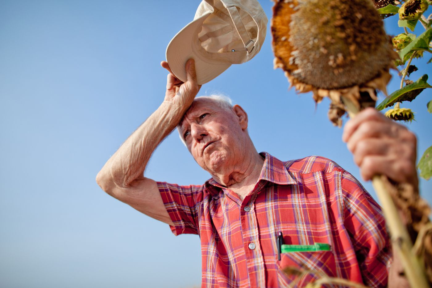 How can seniors avoid heat-related health dangers this summer?