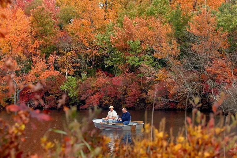 JFEAT07 SGK 77072 Staff Photo by Sharon Gekoski-Kimmel Dennisville, NJ: IN PHOTO: Surrounded by the many colors and splendors of fall, on an unusually warm November weekend, (L-R) Doug Jones and Pete Phillips from Woodstown, enjoy some peaceful fishing from their row boat on Holly Lake in Dennisville. The foliage is at the peak of color this week.1/3