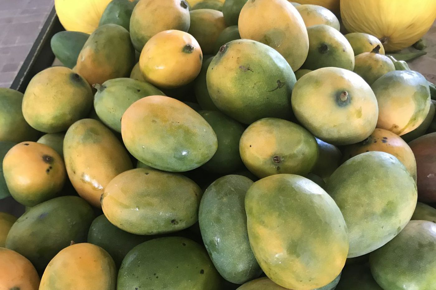 Mango obsession: How to eat them for breakfast, lunch, dinner, and dessert