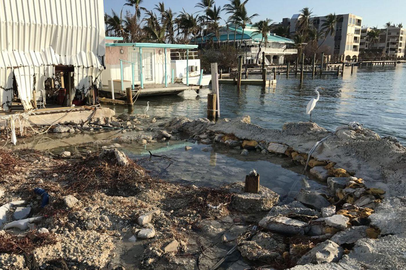 Behind spiraling hurricane costs, human activity