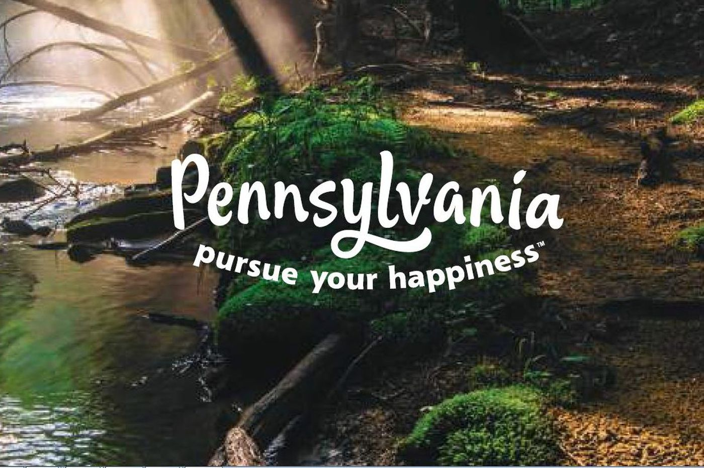 Pa. awards $705K in PLCB grants to promote state's beer industry