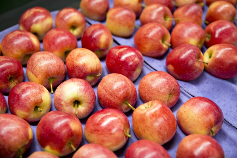 Gala apples became the most popular variety of the fruit among U.S. growers in 2018.