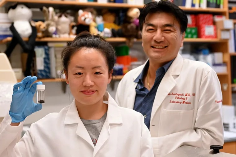 Penn scientists Ruth Choa (left) and Taku Kambayashi induced obese mice to lose 40% of their body weight by secreting fat through their skin. Choa holds a vial of shaved mouse hair.