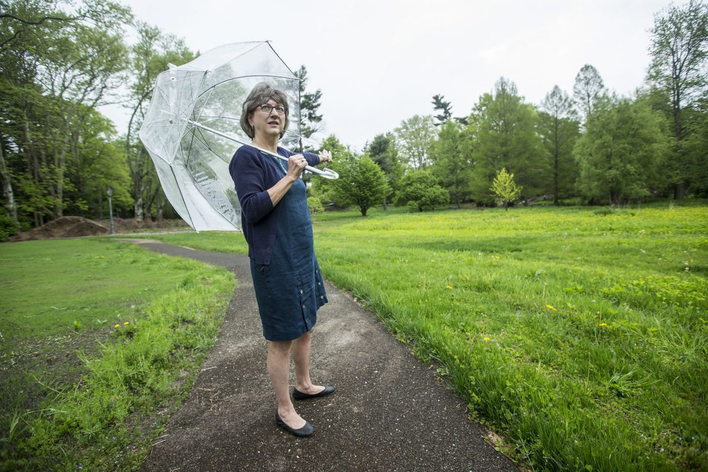 Lower Merion's new public garden already threatened by middle school plan
