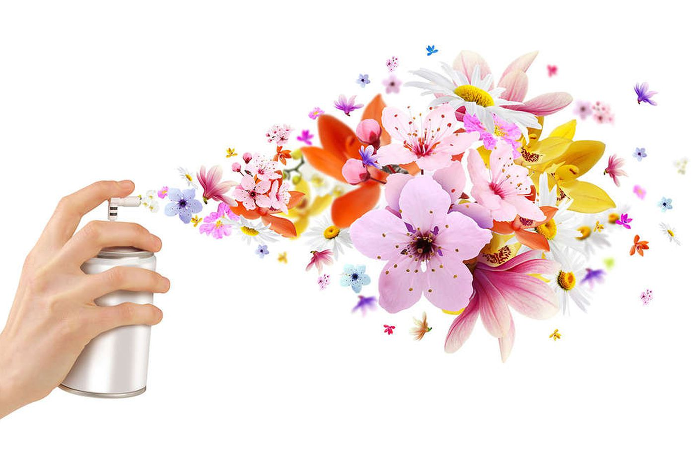 Ask Jennifer Adams: What's the best scent to use when selling a home?