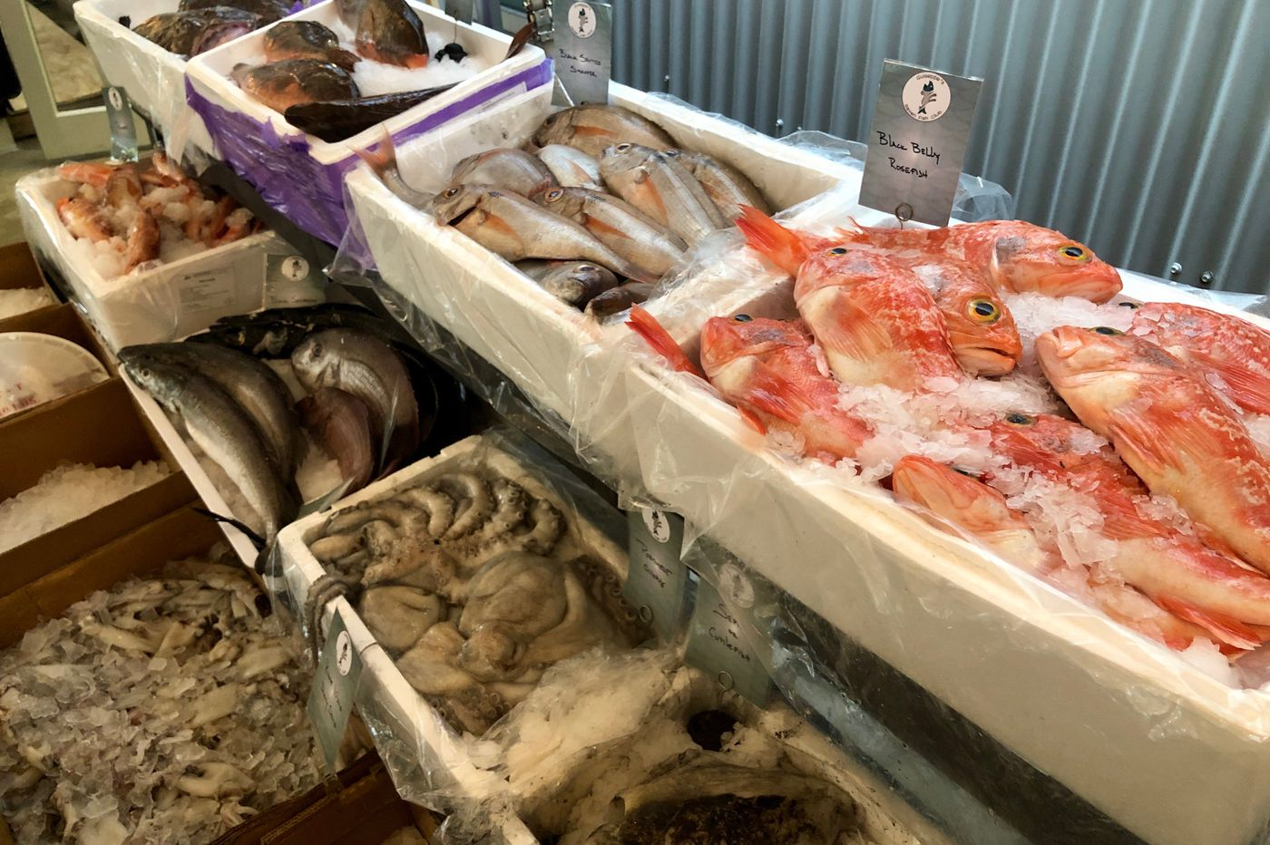 South Philly fish market is revived at Samuels & Son