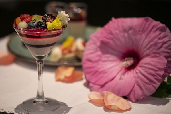 Hibiscus is turning food and drinks red all around Philly. Here's where you can get it.