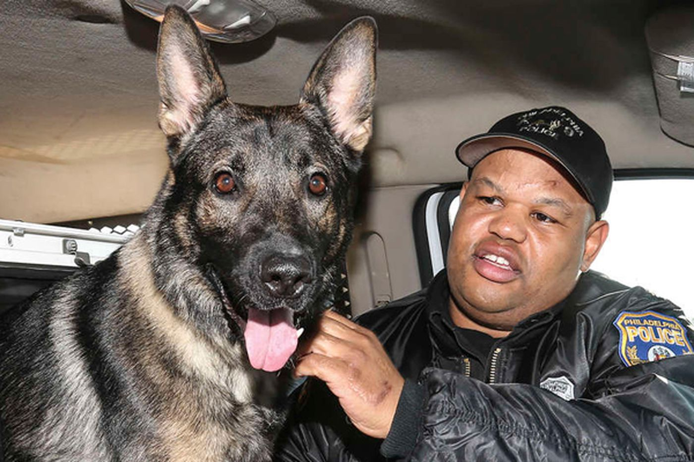 Actor donates dog wheelchair to retired Philly K-9 officer