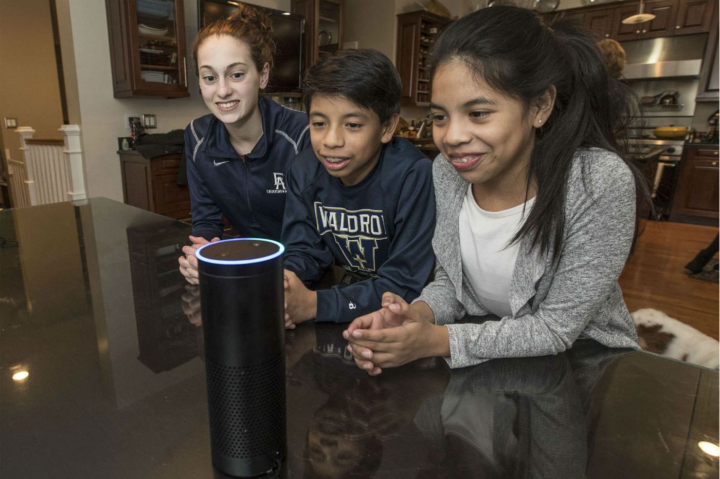 History lessons, grocery lists, and sports scores: What intelligent personal assistants offer families