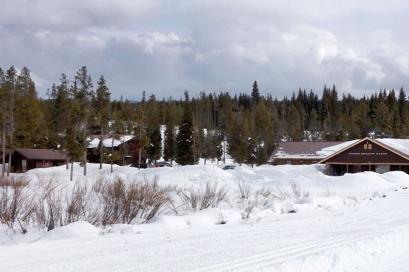 Nordic skiing trails at Jackson Hole wind through pine forest and open meadows