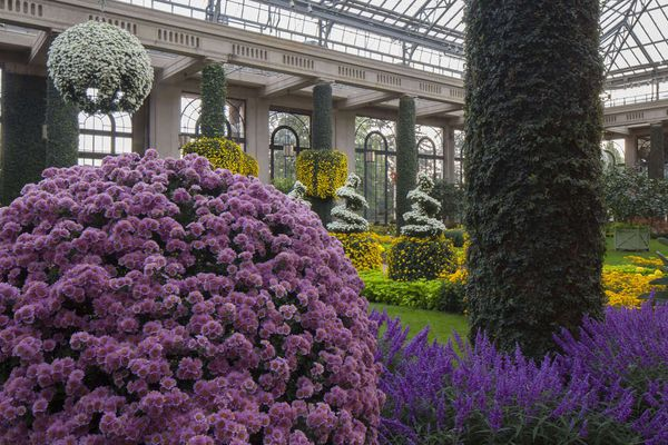 Longwood Gardens plans $200 million expansion, biggest so far at this top Pa. tourist attraction