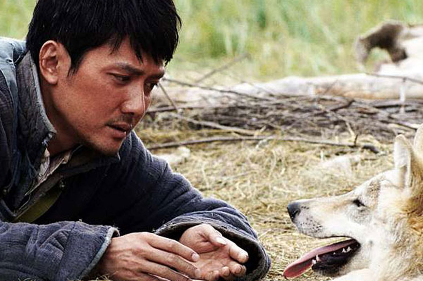 In 'Wolf Totem,' mind-blowing scenes of hunter and hunted