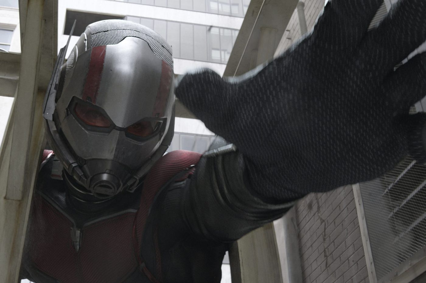 Marvel's 'Ant-Man and the Wasp' was written by a Germantown Academy grad