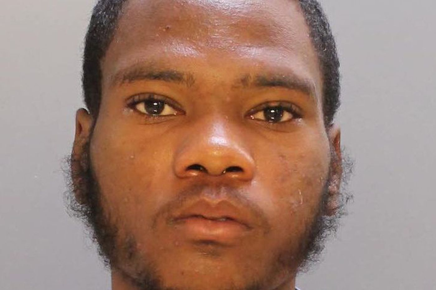 Accused Spring Garden killer was on probation after robbery