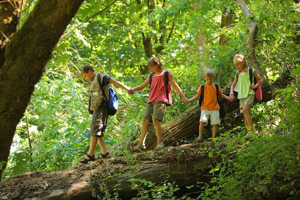 5 questions: Does your child have nature-deficit disorder?