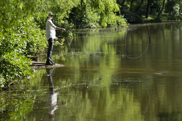 I took Orvis' free fly-fishing classes, then went to Berks County to test my skills