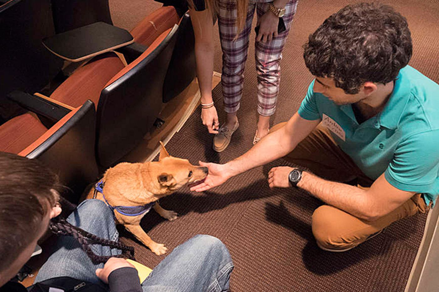 At Drexel, a therapy dog has a devoted student following